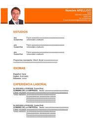 Modelo De Curriculum Vitae En Word Modelo De Curriculum Vitae Profesional Para Trabajo