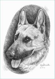 Cani Da Disegnare E Cani Punchbuggylife