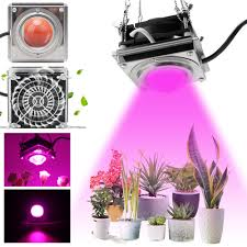 Led Grow Lights For Sale Ebay Details About 3000w Cob Led Grow Light Full Spectrum Lamp Cooling Fan For Hydroponic Veg Plant