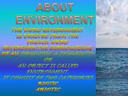write an essay on saving the environment do you need a comma  need motivation to write essay nowadays environmental