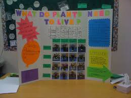 journeys grade science fair lessons teach science fair mrs mccartney 39 s class blog