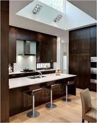 modern wood kitchen cabinets. Minimalist Modern Wooden Of Glamorous Wood Kitchen Cabinets D