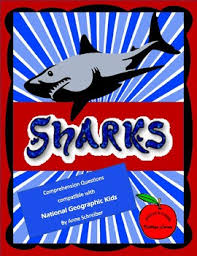 sharks patible with national geographic kids sharks patible with national geographic kids