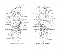Reflexology Chart Vagus Nerve Heartsong Blog Heartsong Bodywork Massage Therapy And