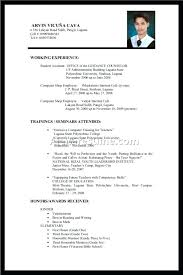 Resume Professional Experience Examples Resume Examples For Students