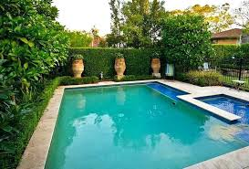 3d Pool Design Software And Landscape 3 D Best
