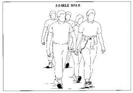 Army Apft Chart Walk Fm 21 20 Chapter 14 Army Physical Fitness Test 550 Cord