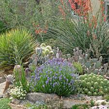 how to create well drained soil high