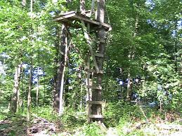 i built this without using a ladder it was a bit tricky but i succeeded i started by making steps from the main tree trunk to a smaller tree growing