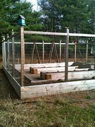 pintuck09 deer resistant garden