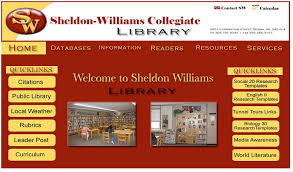 Small Picture Best practices in school library website design