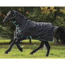 Horseware Ireland Amigo Hero Plus 900d Disc Front Medium Weight Turnout