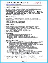 Sql Developer Resume Sample Vb Developer Resume Resume For Study 95
