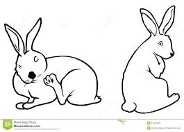 Bunny Outlines Stock Vector Illustration Of Vector Rabbit 17516255