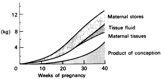 Weight Chart During Pregnancy In Kg Physiology Of Pregnancy Glowm