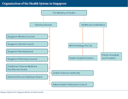 singapore international health care system profiles what are the key entities for health system governance