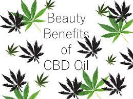 Beauty Benefits of CBD Oil – Kristi with a K