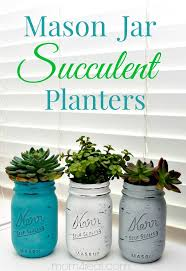 Mason jars are perfect for planting succulents in. You can either plant  succulents in transparent mason jars or paint them with two coats of chalky  finish ...