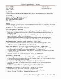 Development Worker Sample Resume Combination Resume Example