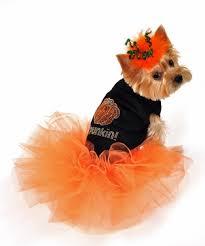 Follow Posh Puppy Boutique