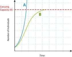 Population Growth Limits Read Biology Ck 12 Foundation