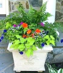 flower pot ideas for winter best outdoor flower container ideas images on for planter plans