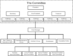 Organizational Chart For Non Profit Organization 72 Rational Npo Structure
