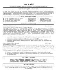 Project Management Buzzwords Resume Project Management Resume