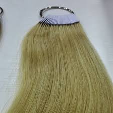 8 Inch Human Hair Color Ring For Salon Hair Color Chart Natural Blonde Color Color Adapter In Color Rings From Hair Extensions Wigs On