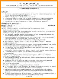 Resume Introduction Wonderful 1524 Resume Introduction Examples 24 Resume Summary Statement Examples