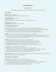 Sap Basis Fresher Resume Format Choppix