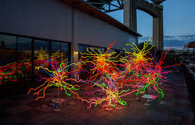 at 75 artist dale chihuly still draws and paints every day using color shape line and light has always played a central role in my creativity he