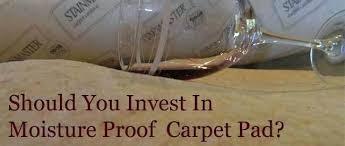 amazing home elegant waterproof rug pad in rugs for hardwood floors extraordinary top rated pads pet