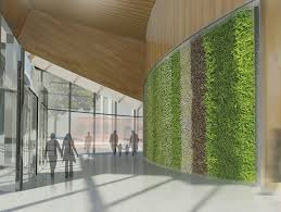 environmentally friendly office. Eco Friendly Office #Eco Ideas #eco #environmentally Environmentally