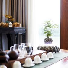 levitating furniture. product image for magnetic levitating plant pot furniture