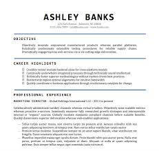 Resume Templates Word Format Resume Sample