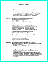 Computer Programmer Resume Objective Resume Online Builder