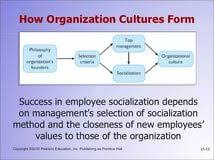 organizational culture essay title in essay custom papers online essay on organizational culture