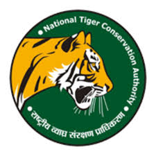 essay on environment wildlife conservation efforts in  essay on environment wildlife conservation efforts in
