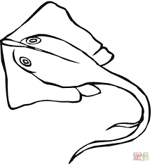 Small Picture Stingray coloring page Free Printable Coloring Pages