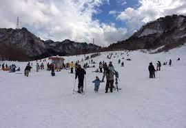 胎内 スキー 場 天気