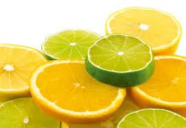 Resultado de imagem para fotos de frutas limões laranjas