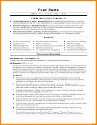 Microsoft Word 2010 Resume Template Beautiful Show Resume Samples