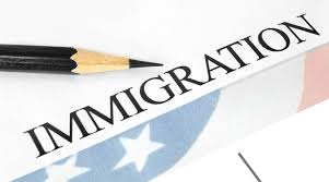 immigration essay pros cons of immigration immigration essay
