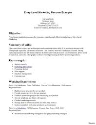 It Resume Template Entry Level Resumes Templates Beautiful Design Stunning Ideas 71