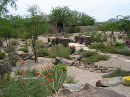 Desert Backyard Designs Cool Desert Landscaping Ideas