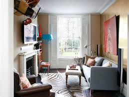 Zebra Rug Living Room Phenomenal Decorating Long Narrow Living Room Living Room Windows