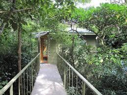Inside My Tree House  Tree Houses  Pinterest  Tree Houses Treehouse Monteverde Costa Rica