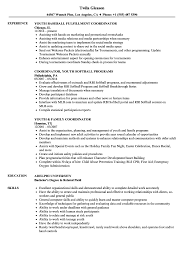 Sample Youth Program Coordinator Resume Youth Coordinator Resume Samples Velvet Jobs 14