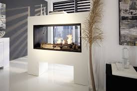 89 most matchless double sided wood burning fireplace insert see through gas fireplace modern double sided